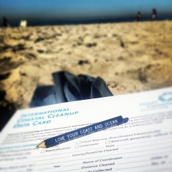 Jackie Carr Instagram photo winner CCD2012 beach coastal cleanupday