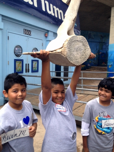 child holds up a whale vertebrate at the Santa Monica Pier Aquarium