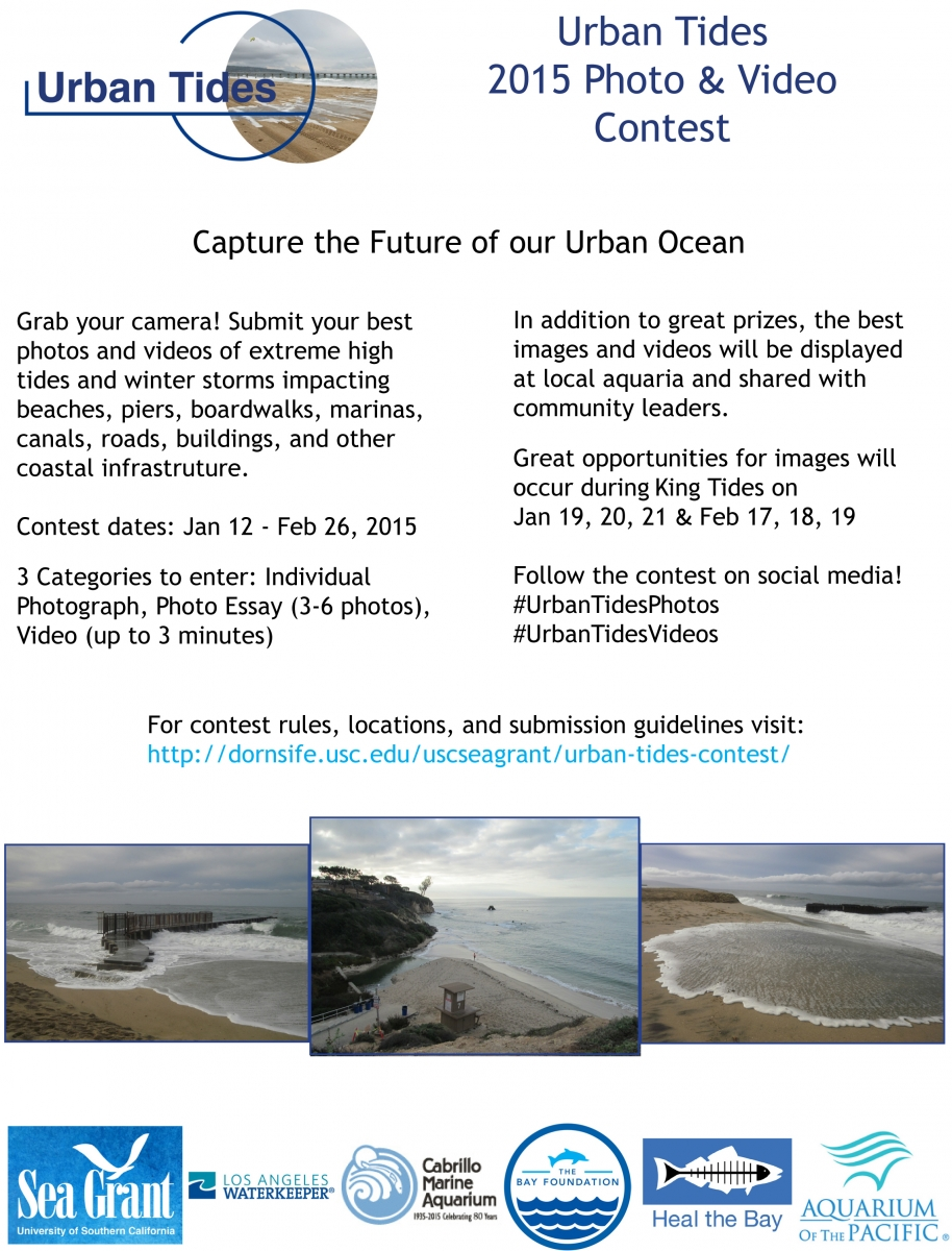 Urban Tides Photo & Video Contest
