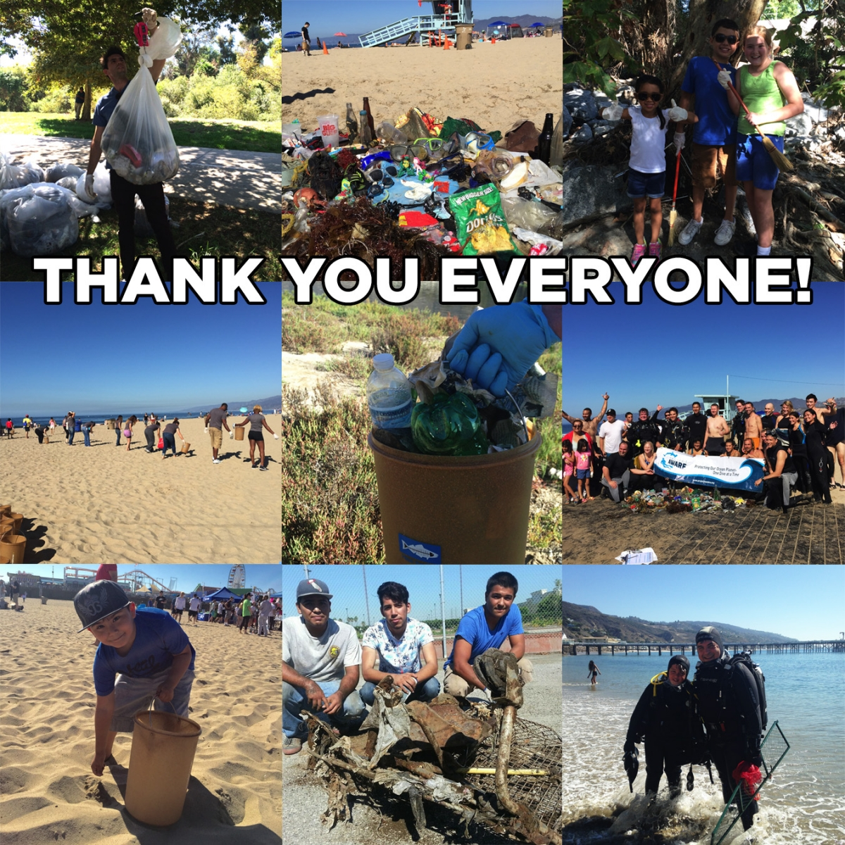 Coastal Cleanup Day 2015 photos