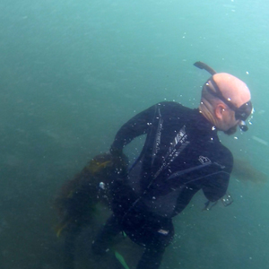 Jose diving for seaweed at Palos Verdes