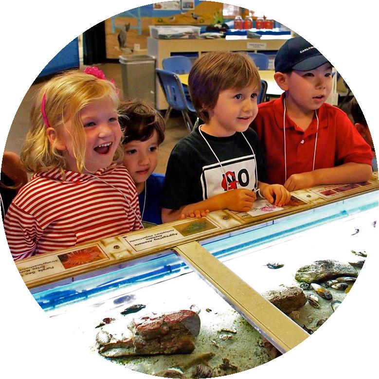 Kids at the Touch Tank at the Santa Monica Pier Aquarium