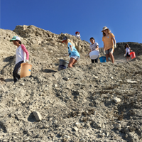 Volunteers climbing down to Lunada Bay