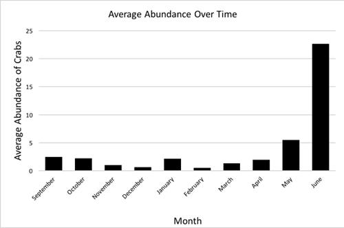 Plotting average abundance of sand crabs over time