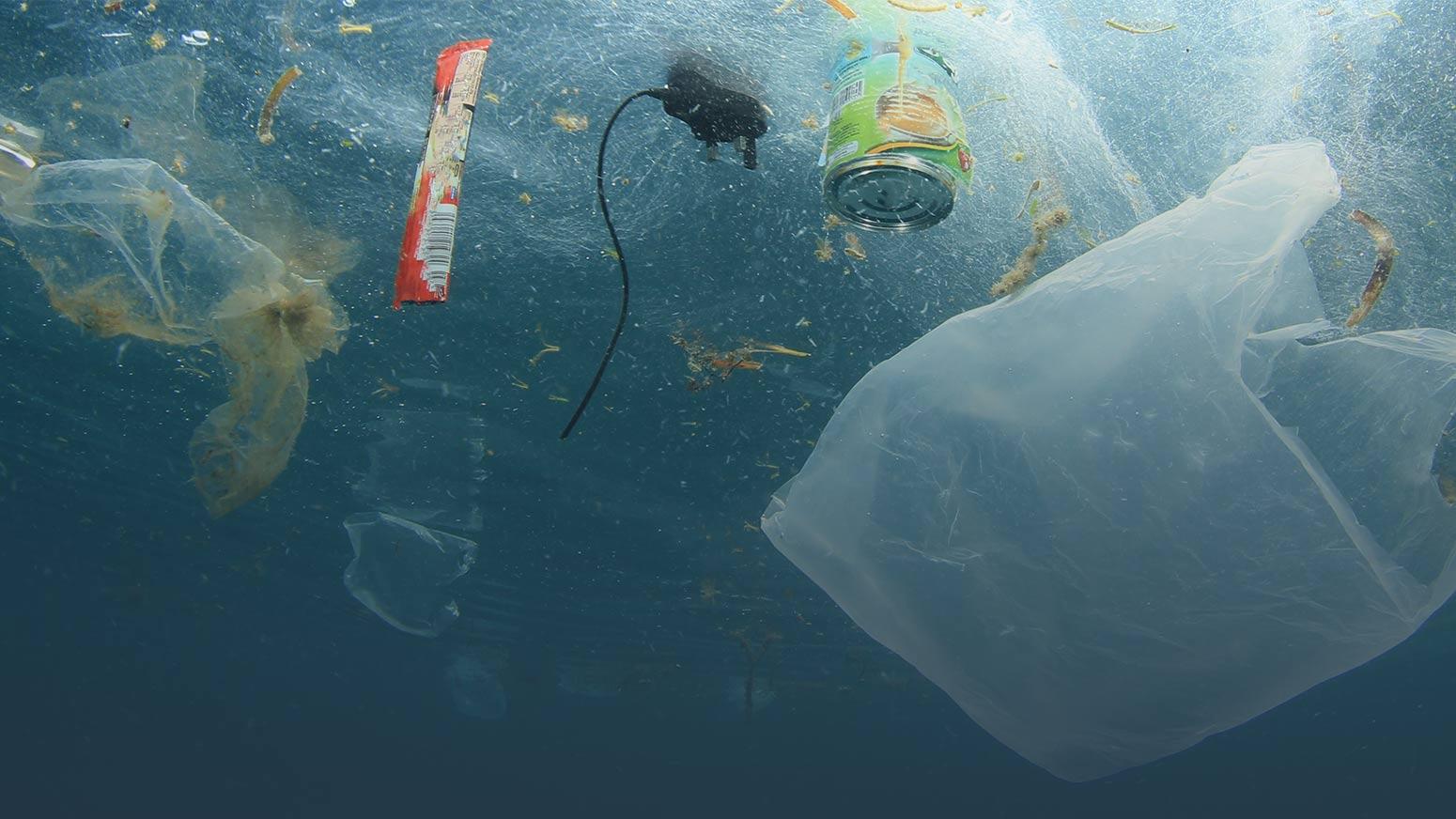 los angeles nonprofit environment ocean volunteer