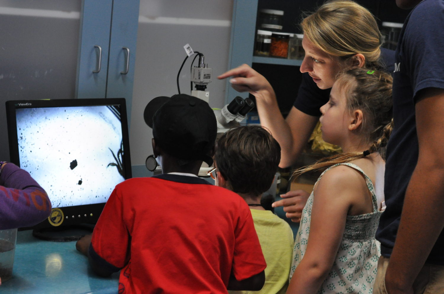 Discover fascinating, minuscule animals with the help of our high-powered microscopes.