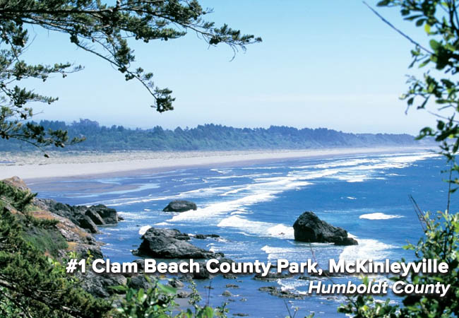 This is Clam Beach County Park's fourth consecutive appearance on the Beach Bummer list, this year moving up and claiming the dubious No. 1 spot. Fed by Patricia Creek and Strawberry Creek, potential bacteria sources include private septic systems found upstream. The Humboldt Public Health lab is developing Bacteroides testing to help pinpoint the source.