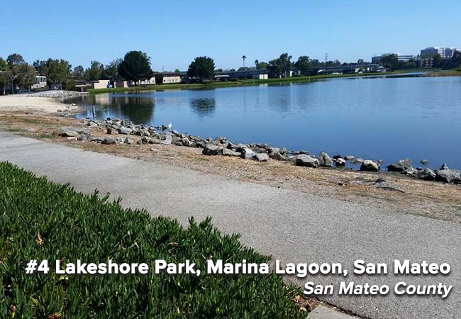 Marina Lagoon returns to the Beach Bummer list this year after a brief reprieve in the 2015 summer season, when it earned a C grade. Like many enclosed beaches, poor water circulation is an issue for the Marina Lagoon where Lakeshore Park is located.