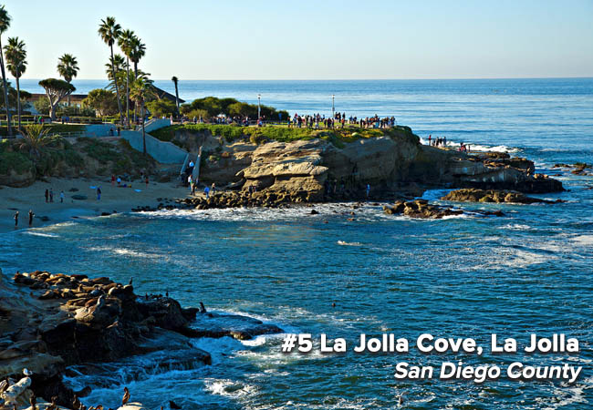 San Diego's La Jolla Cove is a new addition to the Bummer list this year. It is likely that the cove-like conditions (limited water circulation) exacerbate poor water quality. Agency staff who monitor water quality in the area also noted an increase in seal and sea lion activity. But whether these pinnipeds are a contributing factor to the high bacterial counts is unconfirmed.