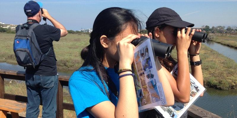 explore-ballona-bird-watching