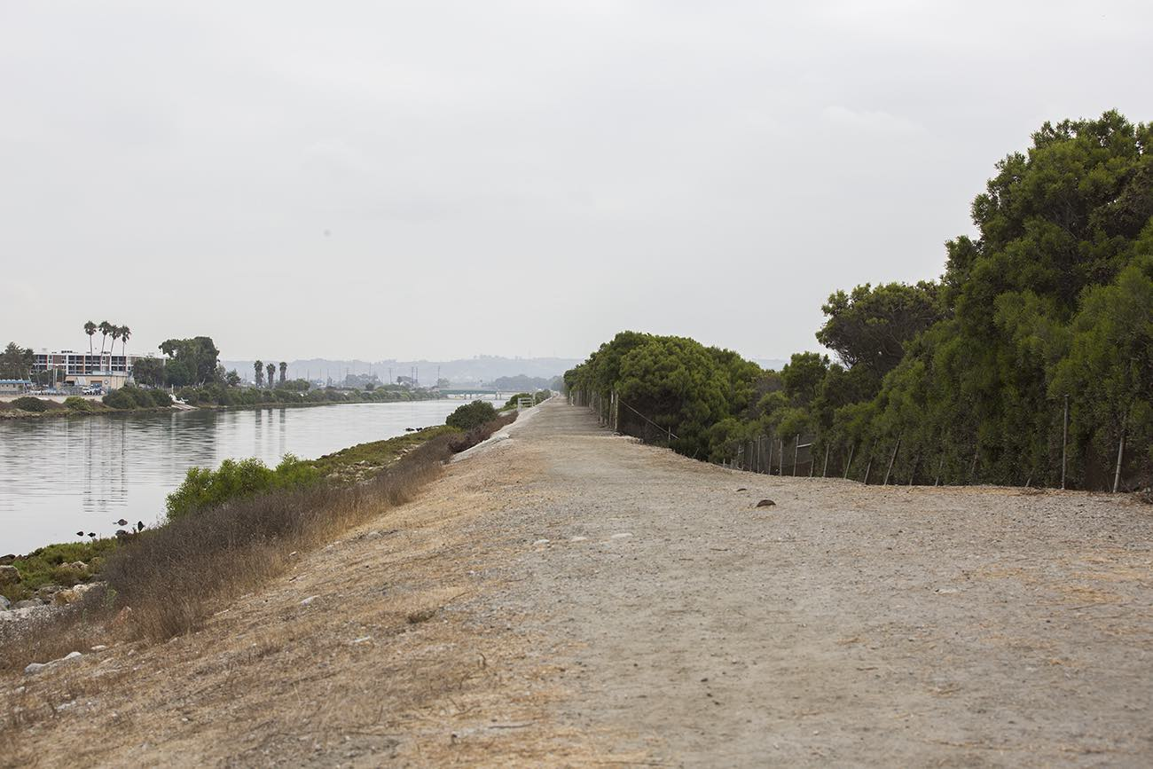 Bring Back Ballona Wetlands