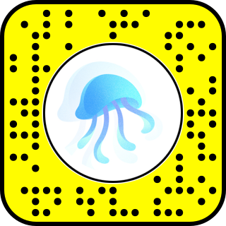 heal the bay snapchat lens jellies