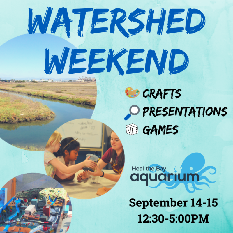 Water Weekend flyer: crafts, presentations, games