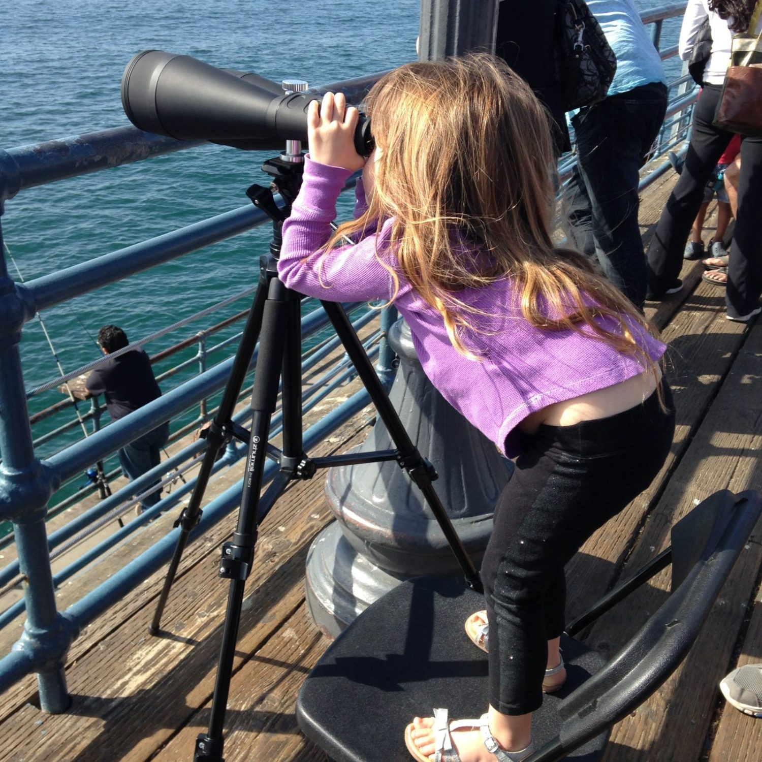 Whale spying 2-15-14 by TC