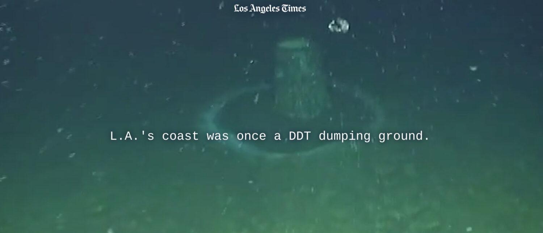 DDT Dumping near Catalina