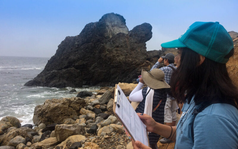 Heal the Bay MPA Watch volunteer takes a survey