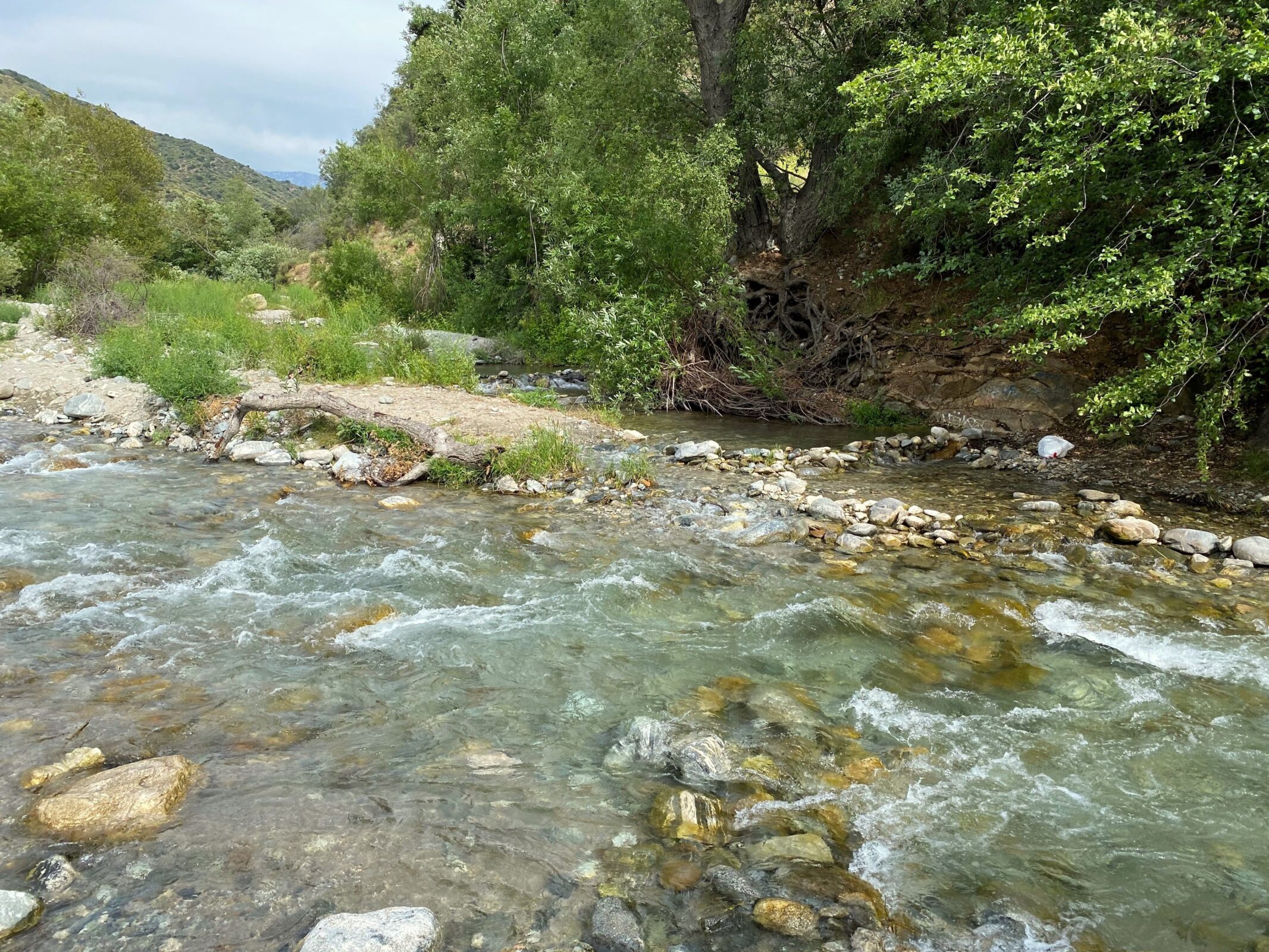 The North Fork of the San Gabriel River