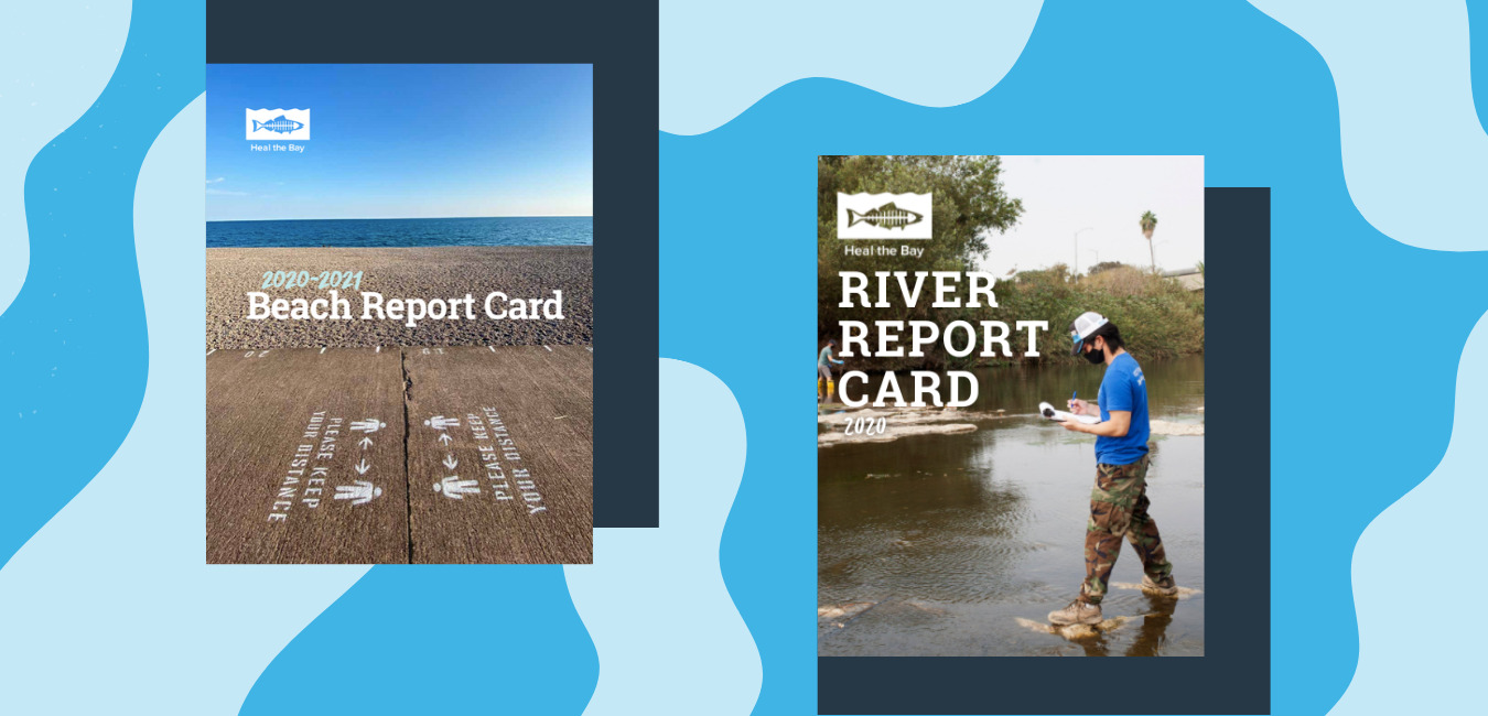 A graphic with the beach report card and river report card covers on top of a blue wavy background that looks like water